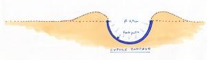 cupule concave